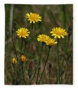 Yellow Wild Flowers Along The Chehalis Trail Fleece Blanket