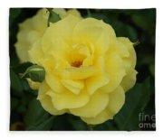 Yellow Wonder Rose...   # Fleece Blanket