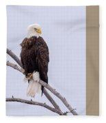 Yellowstone Bald Eagle Fleece Blanket