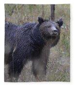 Yellowstone Grizzly Fleece Blanket