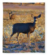 You Have Her Attention Fleece Blanket