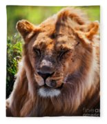 Young Adult Male Lion Portrait. Safari In Serengeti Fleece Blanket
