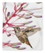 Young Allen's Hummingbird Fleece Blanket