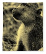 Young Baboon In Black And White Fleece Blanket
