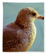 Young Gull Fleece Blanket