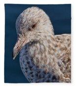 Young Herring Gull Fleece Blanket