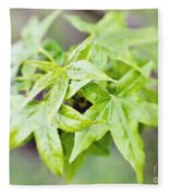 Young Leaves Fleece Blanket