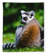 Young Lemur Fleece Blanket