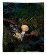 Young Lonely Mushroom 2 Fleece Blanket