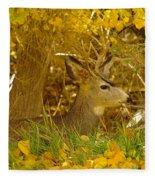 Young Male Buck Fleece Blanket