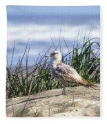 Young Seagull No. 2 Fleece Blanket