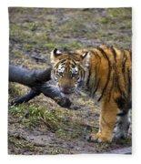Young Tiger Fleece Blanket