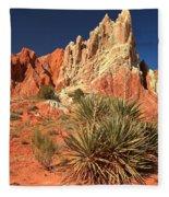 Yucca Badlands And Colors Fleece Blanket