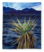 Yucca Flower In Red Rock Canyon Photograph By Panoramic Images