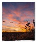 Yucca Sunset Fleece Blanket