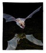 Yuma Myotis Bat Fleece Blanket