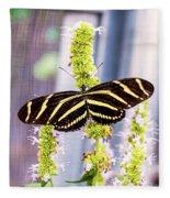 Zebra II Fleece Blanket