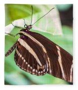 Zebra Iv Fleece Blanket