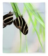 Zebra Longwing Butterflies Mating Fleece Blanket