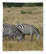 Zebra On Masai Mara Plains Fleece Blanket