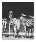 Zebras From Behind Fleece Blanket