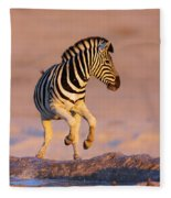 Zebras Jump From Waterhole Fleece Blanket