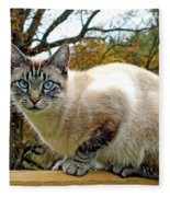 Zing The Cat In The Fall Fleece Blanket