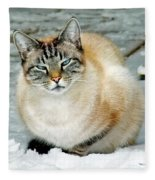 Zing The Cat On The Porch In The Snow Fleece Blanket