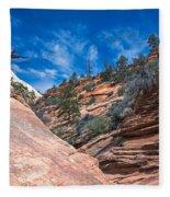 Zion Beauty Fleece Blanket