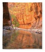 Zion Narrows Bend Fleece Blanket