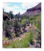 Zion National Park 1 Fleece Blanket