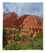 Zion National Park In Summer Fleece Blanket