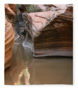 Zion Puddle Fleece Blanket