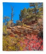 Zion Reds Fleece Blanket