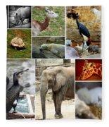 Zoo Collage Fleece Blanket