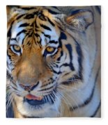 Zootography3 Tiger Prowl Close-up Fleece Blanket