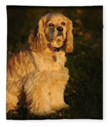 American Cocker Spaniel Fleece Blanket