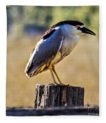 Black-crowned Night Heron Fleece Blanket