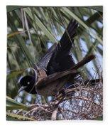 Boat-tailed Grackle - Quiscalus Major Fleece Blanket
