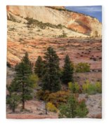 East Zion Canyon Hdr Fleece Blanket