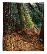 Fall Carpet Fleece Blanket