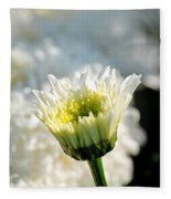 0002 Leucanthemum Cog Hill Awakening  Fleece Blanket