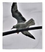 001 Gull To Out Do Wallenda Fleece Blanket