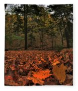 0013 Letchworth State Park Series Fleece Blanket