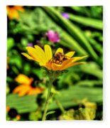 002 Busy Bee Series Fleece Blanket