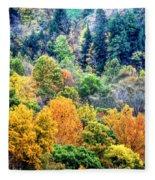 0026 Letchworth State Park Series   Fleece Blanket