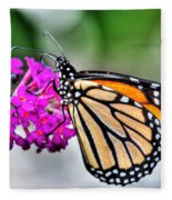 004 Making Things New Via The Butterfly Series Fleece Blanket