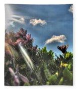 007 Summer Sunrise Series Fleece Blanket