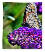 012 Making Things New Via The Butterfly Series Fleece Blanket