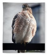 04 Falcon Fleece Blanket